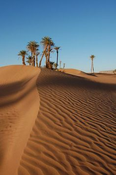 Agadir, Morocco Experience something a little different and see the wonders of Morocco! Deserts Of The World, Cap Vert, Salinas, Mekka, Desert Dream, Marrakech, Morocco Travel, Exotic Places, North Africa