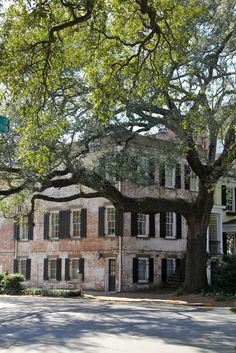 ~The epitome of southern charm in Savannah~