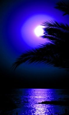 LUZ MELANCOLIA   THIS IS MOONLIGHT  BLUE....ON MOONLIGHT-BLUE WATER!!!...ccp