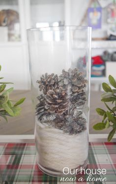 Decorating with those glass hurricanes, vases or decorative lanterns can be difficult. What do you put in them? There are so many simple ideas to add just the right touch to a home for the Christmas and winter season!
