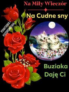 Good Night, Table Decorations, Aga, Humor, Bending, Nighty Night, Humour, Funny Photos, Funny Humor