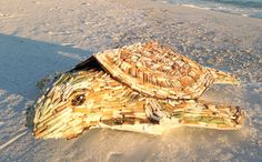 """""""Cig"""" the sea turtle made of cigarette butts, basks on the beach. Local artist Shelly Marshall decided to turn those items into a work of art, and """"Cig"""" the sea turtle is the result.  Made of over 1,050 cigarette butts, """"Cig"""" calls attention to the harm that flicking a small item such as a cigarette butt can do to the environment."""