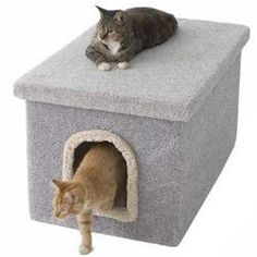 Hide an unsightly litter box with this specially designed carpeted litter box enclosure from New Cat Condos. With a removable lid, this enclosure makes cleaning convenient. Inside its carpeted exterior is easy-case stain-resistant flooring. Hidden Litter Boxes, Litter Box Covers, Cat Litter Box Enclosure, Cat Condo, Pet Safe, Cat Supplies, Cat Furniture, Furniture Decor, Diy Stuffed Animals