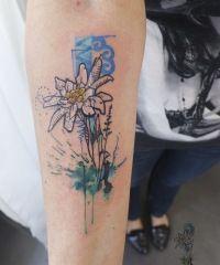 Decasa studio tattoo