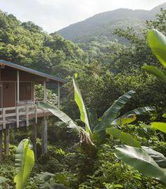 Casa Grande Mountain Retreat near Utuado, Puerto Rico