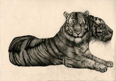 Alicia's Portfolio - Drawings