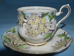 Royal Albert England Bone China Hawthorn Flower of Month Tea Cup and Saucer Set
