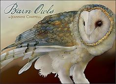 "© Jeannine Chappell -The barn owl (Tyto alba), one of the most widely distributed of all birds. Now acknowledged for its role as a predator of rodents, up until the late twentieth century this large-winged, long-legged owl was maligned as a portent of evil or death, hunted even by the farmers who reaped the benefits of the barn owl's prowess. Silent in flight, with a telltale screech serving for a ""hoot,"" the barn owl has a heart-shaped face that may have helped endear it to present-day…"