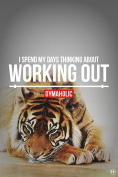 I spend my days thinking about working out.