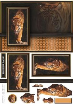 Tiger in the Shadow Quick Card on Craftsuprint designed by Russ Smith - Striking A5 card front, banners and decoupage layers, using a painting of a tiger creeping through the shadows. Looks great for male and female cards. Matching insert available. - Now available for download!