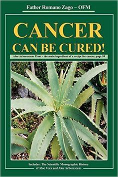 Cancer Book by Father Romano Zago