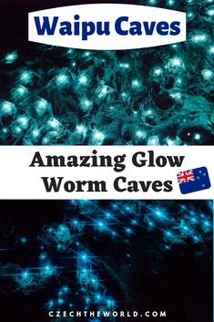 All you need to know for visiting Waipu Glow Worm Caves in Northland, New Zealand. What to expect, how to dress or photograph glowworms? Camping, directions and more. Buy Flight Tickets, Glow Worm Cave, New Zealand Travel, Group Travel, Natural Phenomena, Plan Your Trip, Worms, Cool Places To Visit, Trip Planning