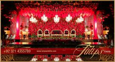 Tulips event - Best Pakistani wedding stage decoration flowering for Mehndi walima barat stages décor services provider in Lahore Pakistan. Wedding Stage Decorations, Red Wedding Receptions, Reception Stage Decor, Wedding Stage Design, Balloon Decorations, Reception Backdrop, Wedding Themes, Trendy Wedding, Gold Wedding