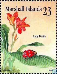 Marshall Islands - Insects and spiders 2002