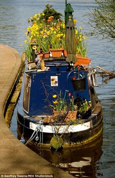 The sun was shining on pretty canal boats on the River Thames in London today