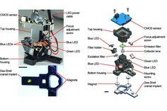 Mini Mikroskop, Karmaşık Beyin İşlevlerine İlişkin Bilgi Sağlıyor Minnesota, Science, Map, Location Map, Maps