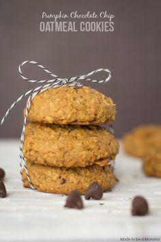 Pumpkin-Chocolate-Chip-Oatmeal-Cookies