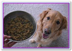 Pet Needs Pet Needs On Pinterest