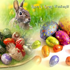 Bunny and eggs collage. - Imgur