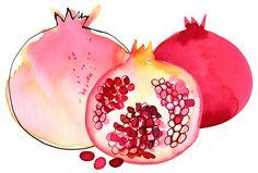 Margaret Berg Art : Illustration : summer / fruit fun
