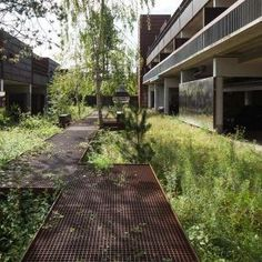 Landscape Architect Tucson