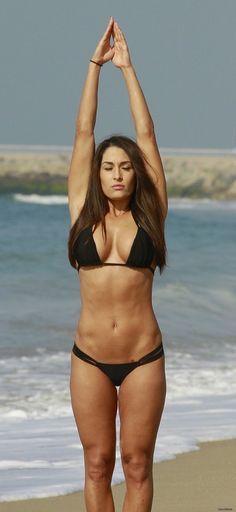 Bella Twins Abs Workout Routine : Nikki Bella and Brie Bella Fitness Routine