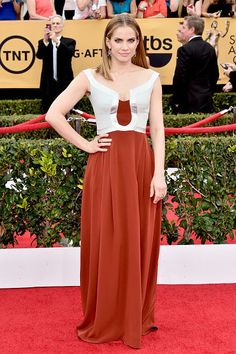 Anna Chlumsky - Best Hairstyles of the 2015 Screen Actors Guild Awards