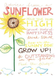 Advice from a SunflowerBlank Greeting Card Front: Advice from a SUNFLOWER Hold your head high Spread seeds of happiness Think solar Keep on the sunny side Grow up! Advice Quotes, Best Quotes, Funny Quotes, Greeting Card Shops, Successful Relationships, Gifts For Nature Lovers, True Nature, Flower Quotes, Wedding Advice