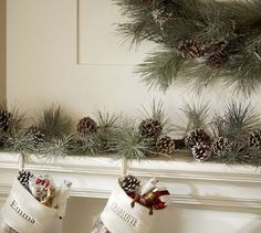 Frosted Pinecone Garland | Pottery Barn