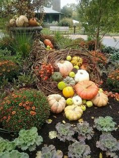 31 Beautiful Front Yard and Backyard Landscaping Ideas for Autumn