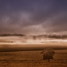 MISTY MORNING by shoaibphotostream, via 500px
