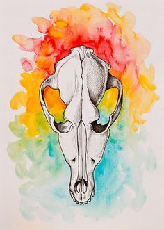 Dog Skull  Original Watercolor and ink painting by oxanaart, $49.00