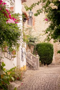 Óbidos Portugal (very lovely cobbled roads - PCC) Places Around The World, Oh The Places You'll Go, Places To Travel, Places To Visit, Around The Worlds, What A Wonderful World, Beautiful World, Beautiful Places, Spain And Portugal