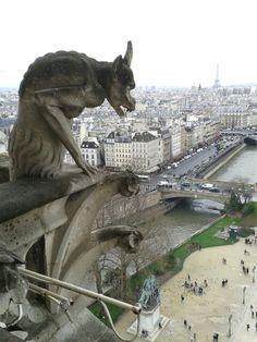 Gárgola de Nôtre Dame.Paris.Abril 2015