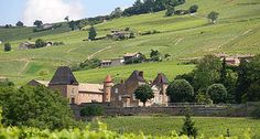 Beaujolais has gotten a bad rap over the past decade but the secret is getting out, it's Burgundy damn it! Ok that might be a bit of a stretch, although it is true in that the Beaujolais vineyards are located in the southern reaches of Burgundy. ... http://www.snooth.com/articles/le-vrai-beaujolais-est-arivee/