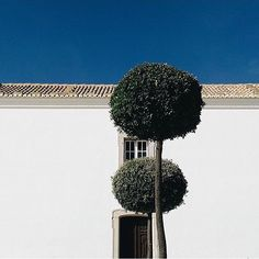 Parabéns @marcomalhado pelo elogio à coerência paisagística  Capta a cultura portuguesa com o hashtag #gerador para seres o próximo destaque no nosso perfil  As 12 melhores fotos do trimestre estarão nas páginas da próxima Revista Gerador  by gerador_eu