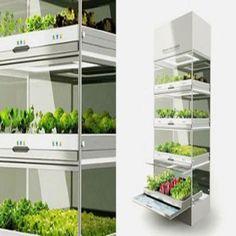 Hydroponic+Nano+Garden:+Redefined+gardening