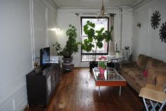 Home Exchange  United States - New York  New York
