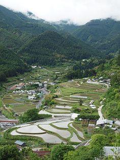 棚田 - Tanada - Tokushima Kamikatsu #Japan