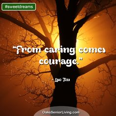 """#Sweetdreams: """"From caring comes courage."""" ~ Lao Tzu  ~OaksSeniorLiving.com #quotes #elderly #caring #seniors Senior Living, Sweet Dreams, Laos, Atlanta, Quotes, Quotations, Quote, Shut Up Quotes"""