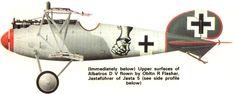 Albatros D.V of Obltn Flasher of Jasta 5