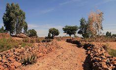 Cartas del Desierto: Debilidad, fortaleza, perseverancia