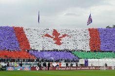 #Coreografia dei tifosi fiorentini in @acffiorentina-@juventusfc durante il campionato di calcio @SerieA_TIM 2013-2014