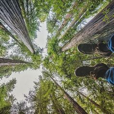 """""""Canopy contemplation.""""  @jjamesjoiner   Share a photo of your #KEEN adventure for a chance to be featured!"""