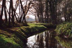 Wandelen in het natuurgebied bij Smeerling Zuid/Oost Groningen