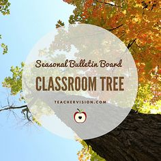 Classroom Tree Bulletin Board: Ideas for Seasonal Decorations (Grades 1-4) https://www.teachervision.com/teaching-methods/childrens-art-activities/6798.html?utm_content=buffer321d7&utm_medium=social&utm_source=pinterest.com&utm_campaign=buffer