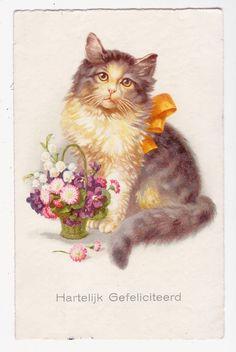 Vintage 1930s Happy Cat Postcard EEN NEDERLANDSE FELICITATIE KAART,..LB