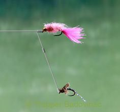 Fly Fishing Tailwaters - Part 3 - Rigging 1 Fly Fishing Lures, Fly Fishing Tips, Walleye Fishing, Fishing Quotes, Carp Fishing, Fishing Stuff, Ice Fishing, Fishing Tackle, Best Trout Flies