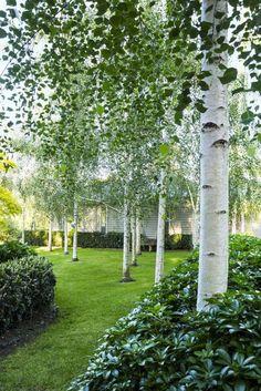 Landscape Gardening Award