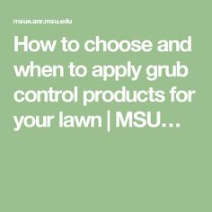 How to choose and when to apply grub control products for your lawn | MSU…